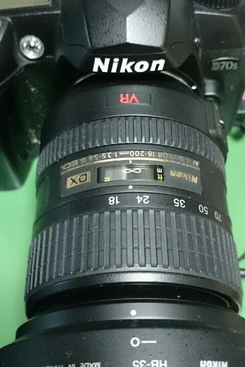 桜を撮りに / Nikon D70s