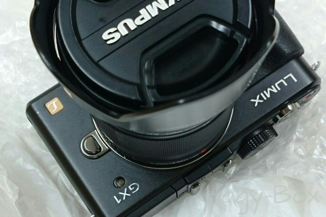 Lumix GX1 その1 / Panasonic Lumix DMC-GX1