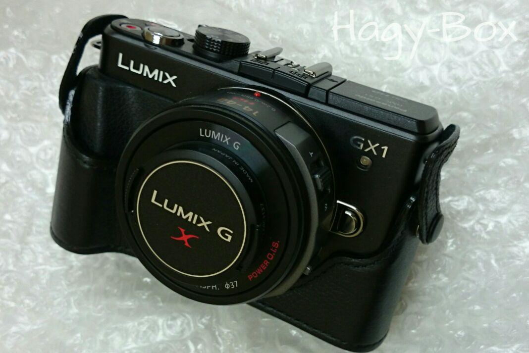 Lumix GX1 その2 / Panasonic Lumix DMC-GX1